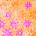 Orange & Pink Daisies Cardstock