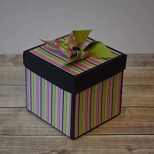 Explosion Box Scrapbook #49