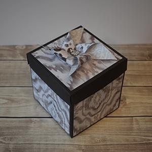 Explosion Box Scrapbook #61