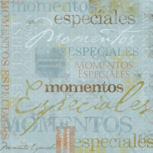 Special Moments Spanish Paper